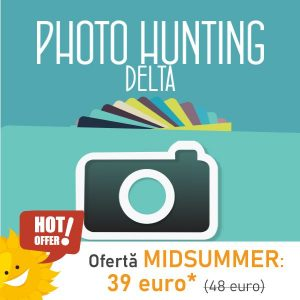 Photo-Hunting_Midsummer-NSL